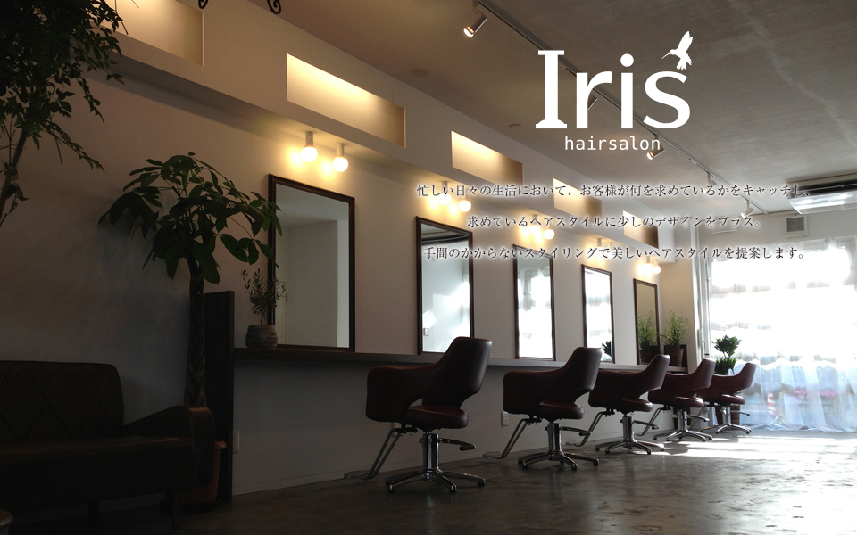 Iris Hairsalon